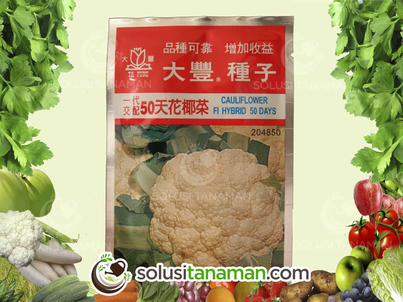 Bunga Kembang Kol 50 F1 10g Bibit Benih Tanaman Sayur Hidroponik Solusi Tanaman